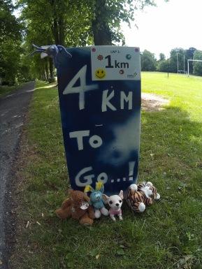 PWS 5km 2015